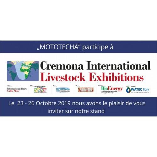 Rendez-nous visite à Crémone, 23 au 26 Octobre 2019